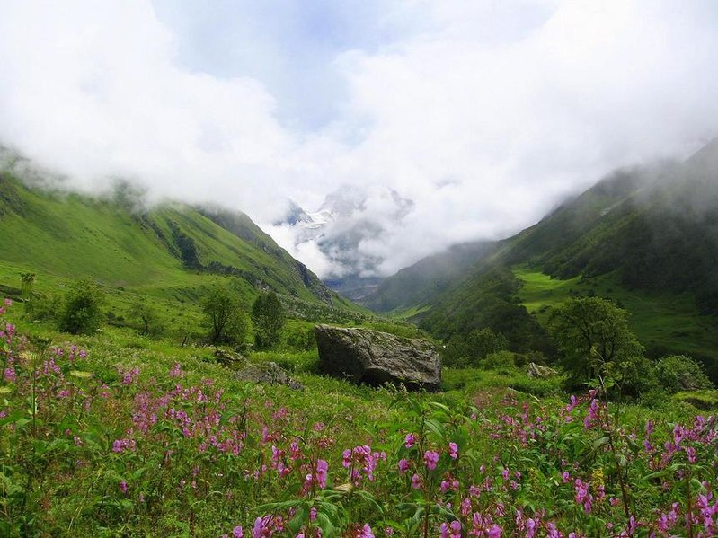 File:Valley of flowers uttaranchal full view.JPG